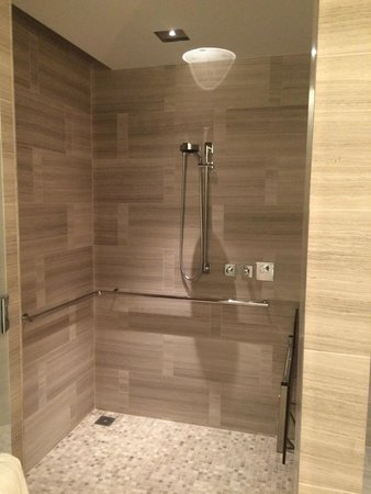 Shower (rain shower with handle option) - Picture of Park Hyatt New ...
