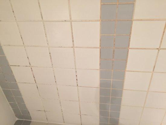 Mercure Paris La Défense Grande Arche Hotel : Mur salle de bain