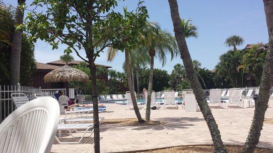 Blind Pass Condominiums: Pool area