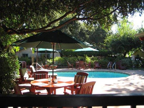 Emerald Iguana Inn: pool area