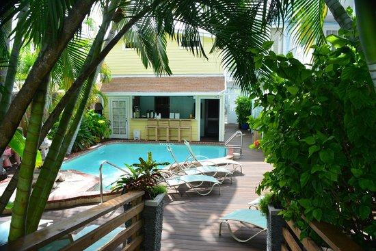 pool picture of douglas house key west tripadvisor. Black Bedroom Furniture Sets. Home Design Ideas