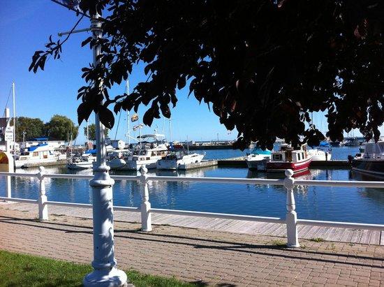 Cobourg Beach: Beautiful Marina.