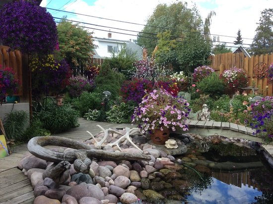 Austrian Haven Bed and Breakfast: Back yard gardens