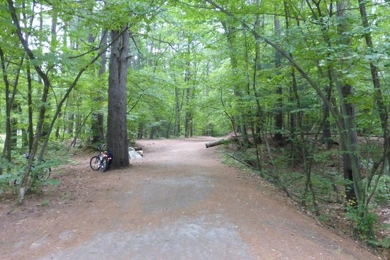 Mine Falls Park: some paths are wide