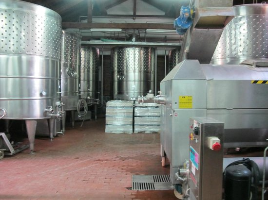Todoroff Wine & Spa Hotel: la bodega