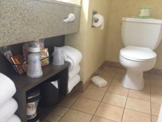 Best Western Plus Raffles Inn & Suites: Coffee maker is right next to toilet