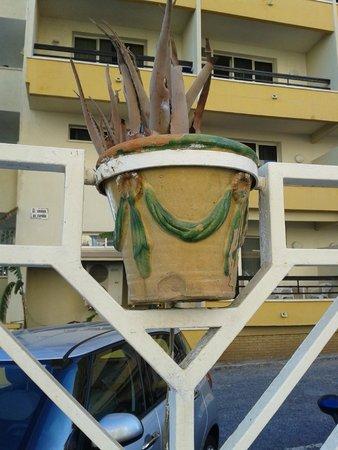 Hotel La Barracuda: vertrocknte Aloe Vera (ungepflegte Anlage)