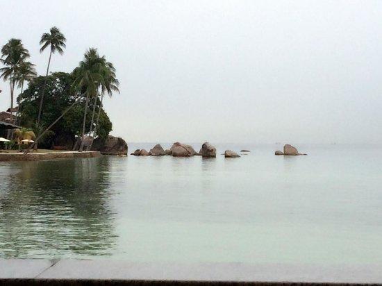 Bintan Cabana Beach Resort: View from room