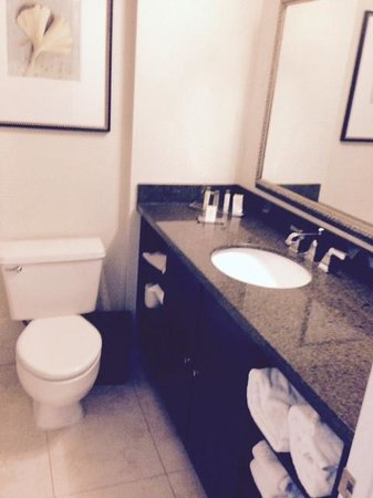 DoubleTree by Hilton Charlotte Airport: Bathroom