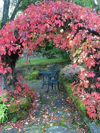 The Blaylock Mansion : Fall colors come to the garden