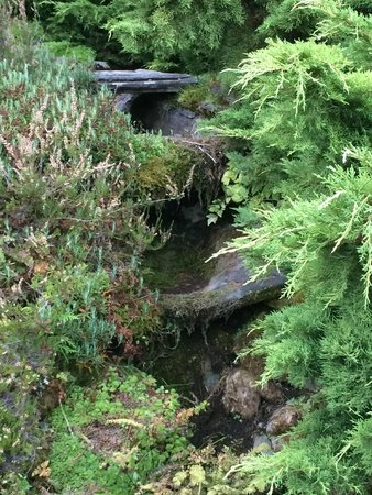 The Blaylock Mansion: Gravity-fed pools in the garden