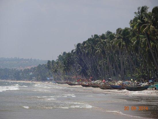Little Mui Ne Cottages : Пляжная линия - лодки рыбацкие