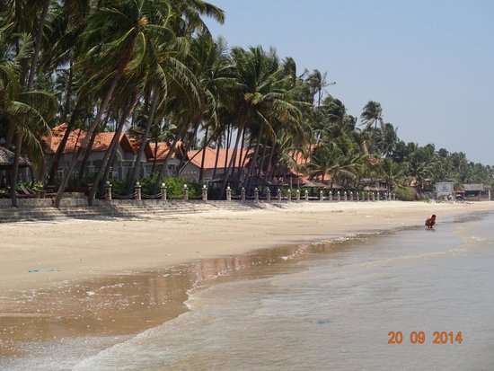 Little Mui Ne Cottages : Пляжная линия
