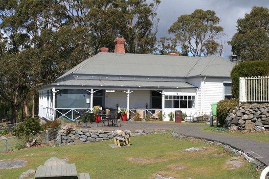 Signal Station Brasserie : Mt Nelson Restaurant