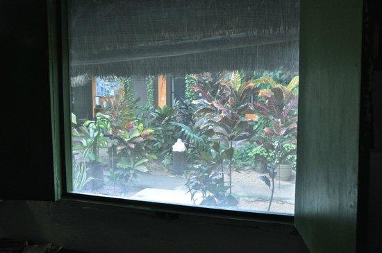 Secret Garden Hotel: vista desde la habitación