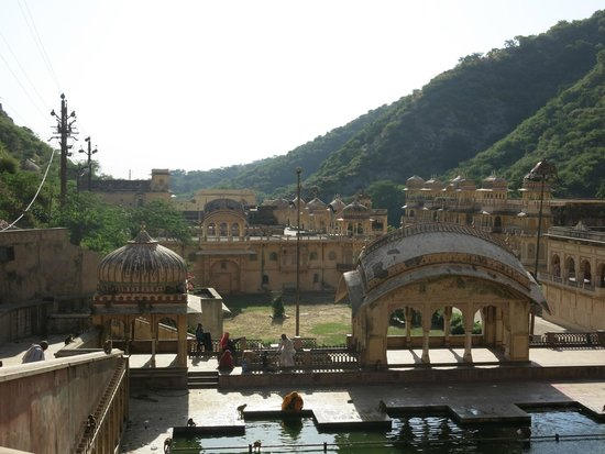 Monkey Temple (Galta Ji): Monkey temple