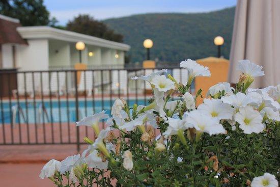 Tahoe Resort: heated pool
