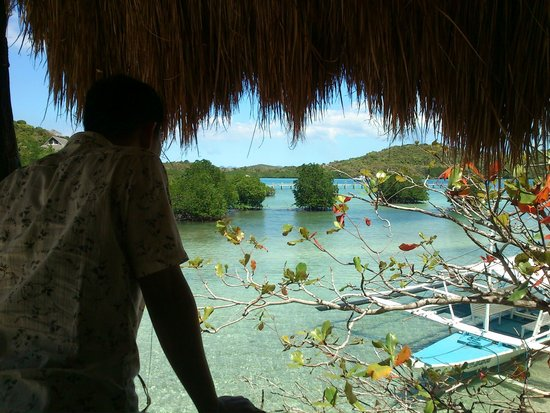 Coral Bay Beach & Dive Resort: 窗外