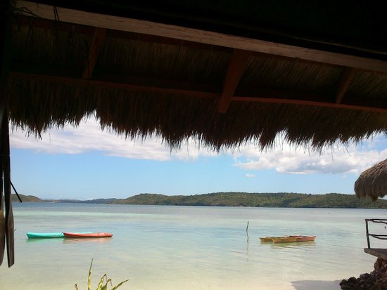 Coral Bay Beach & Dive Resort: 窗外風景