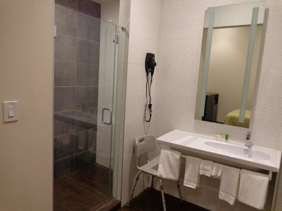 Rodeway Inn Center City: Bath room
