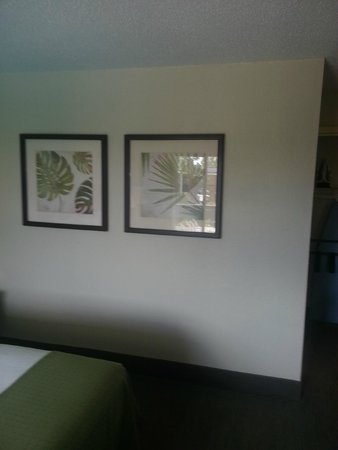 Clarion Inn & Suites Conference Center: Wall Decor