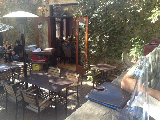 Cilantro : Patio and view into restaurant
