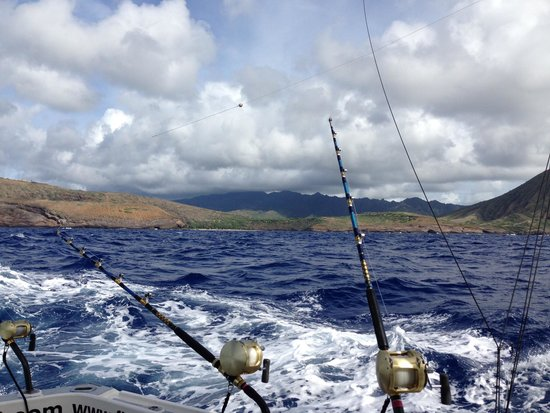 Sept 2014 jay 39 s 40th picture of muireann mariel deep for Deep sea fishing oahu