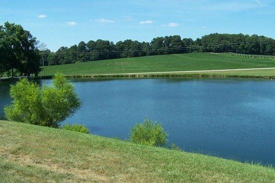 Denton Farm Park: pond