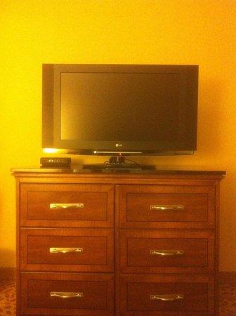 Durham Marriott City Center: TV