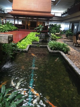 Garden view room picture of swissotel nai lert park for Indoor koi pool