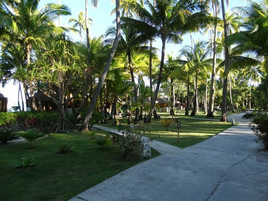Bora Bora Pearl Beach Resort & Spa: Hotel grounds