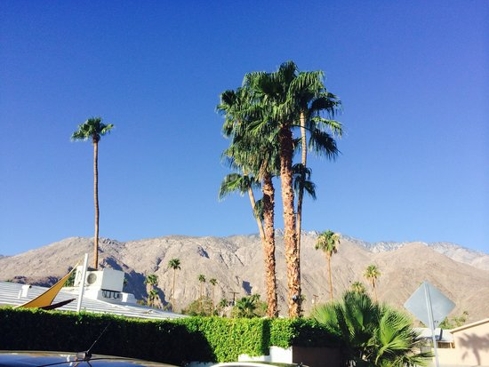 Palm Springs Rendezvous: Mountain view