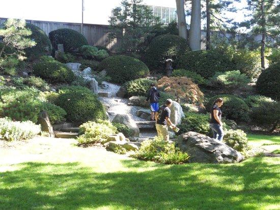 Cleveland Botanical Garden Rainforest Picture Of Cleveland Botanical Garden Cleveland