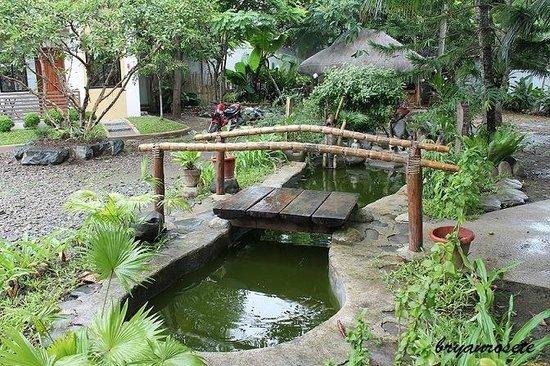 La belle pension house fish pond and mini bridge for Mini koi pond