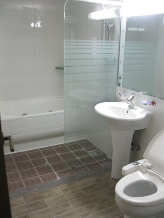 Ever Hotel : Toilet with non-functioning Jacuzzi