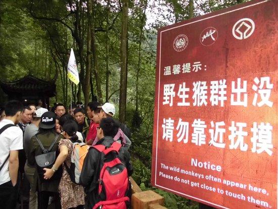 Mt. Emei Natural Ecology Monkey Reserve : 入口