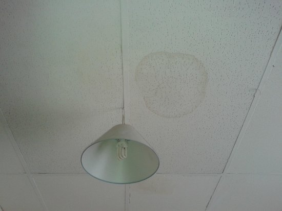 Smiths Hotel: ceiling