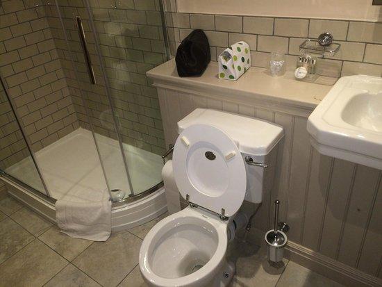 The Black Swan: Shower room, Black Swan Inn