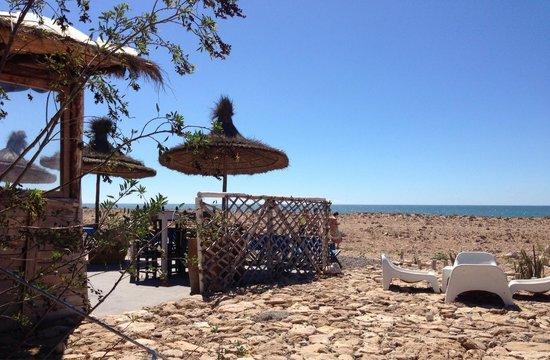 La Mouette et les Dromadaires : Vue sur la mer, exceptionnel emplacement pour déjeuner délicieusement de produits de petits pêch