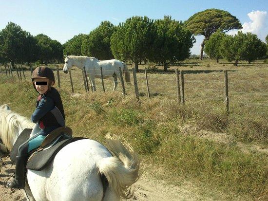 Promenade à cheval, Chez Elise : 4