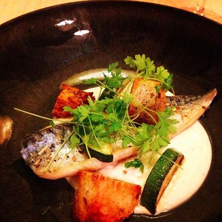 Mackerel with goat cheese mousse