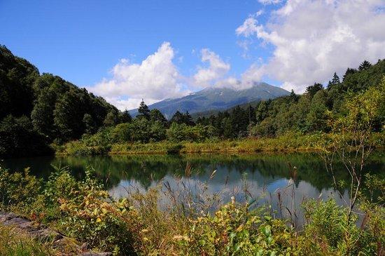 Nomugi Mountain Path