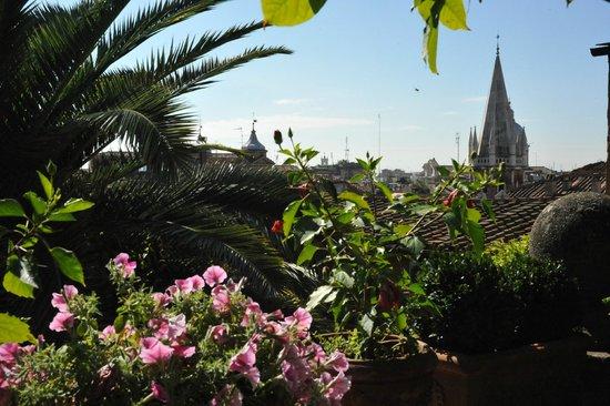 Episcopo Lipinsky B&B: vue de la terrasse