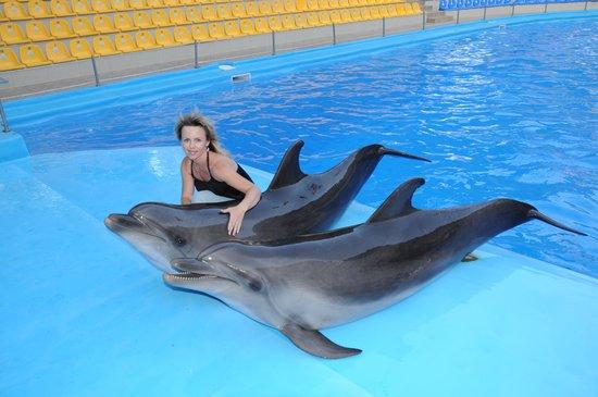 Kharkov Dolphinarium: Дельфинарий