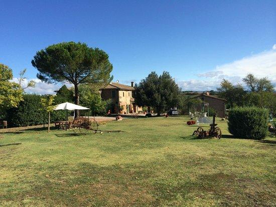 Agriturismo San Giorgio: Property ground