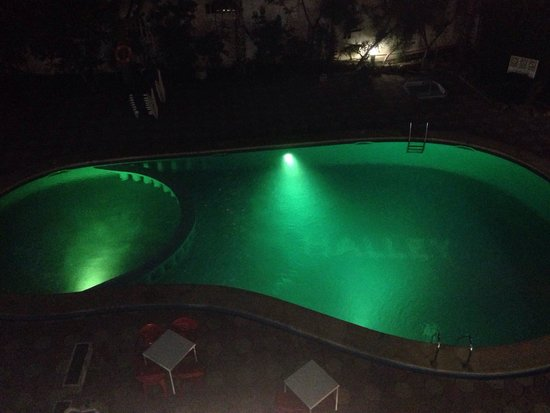 Halley Apartments: Pool at night. Wouldn't use during the day though. Never cleaned