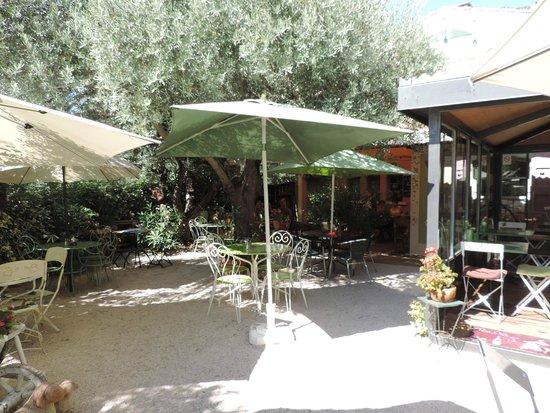 La Grignotière : le jardinet sous les oliviers