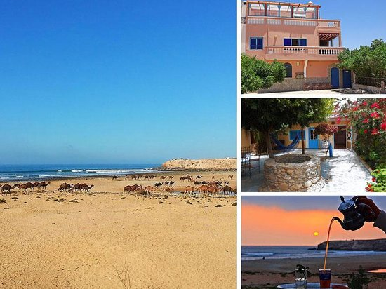 Zen Surf Morocco Surf & Yoga camp