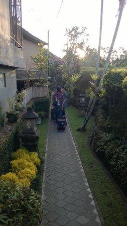 Artini 2 Cottages: hotel garden