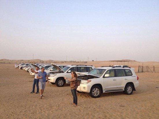 Desert Rose Tourism - Day Tours: monsters in desert